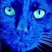 Blue Shadows Poster