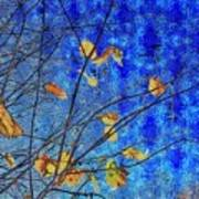 Blue Skies And Last Leaves Of Fall Poster