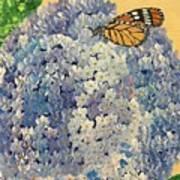 Blue Splendor Poster