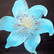 Blue Tiger Lily Poster