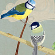 Blue Tit And Great Tit Poster