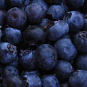 Blueberries Close-up - Vertical Poster