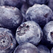 Blueberry Macro Poster by Kitty Ellis