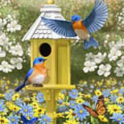 Bluebird Garden Home Poster by Crista Forest