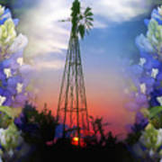 Bluebonnets And Windmill Poster