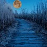 Boardwalk Moon Poster