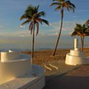 Boardwalk Palms Poster
