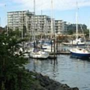 Boat Docks Poster