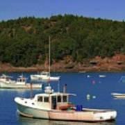 Boats At Bar Harbor Poster