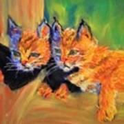 Bobcat Kittens 1 Poster