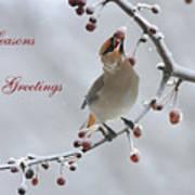Bohemian Seasons Greetings Poster