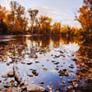 Boise River Autumn Glory Poster