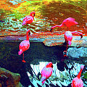 Bold Modified Flamingoes Poster