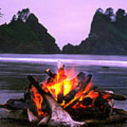 Bonfire On The Beach, Point Of The Poster