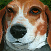 Bonnie - Beagle Painting Poster