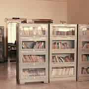 Bookshelves Poster