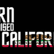Born And Raised In California Birthday Gift Nice Design Poster