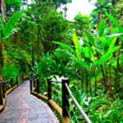 Botanic Gardens Trail Poster