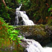Botanic Gardens Waterfall Poster