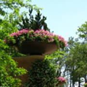 Botanical Sky Poster