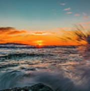 Botany Sunset Splash Poster