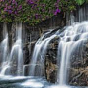 Bougainvillea Blooms Above Wailea Falls.  Poster