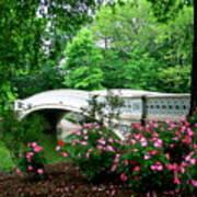 Bow Bridge In Springtime Poster