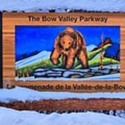 Bow Valley Parkway Snowy Entrance Poster