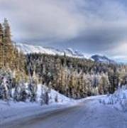 Bow Valley Parkway Winter Scenic Poster
