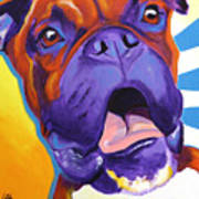 Boxer - Chance Poster by Alicia VanNoy Call