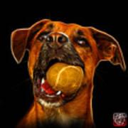 Boxer Mix Dog Art - 8173 - Bb Poster