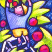 Boy Picking Apples Poster