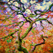 Branching Out In Autumn Neon Poster