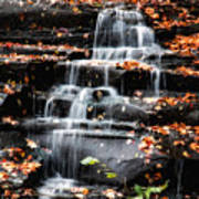 Brandywine Falls In Autumn Poster