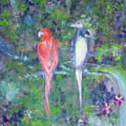 Brazilian Parrots Poster