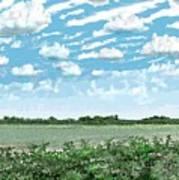 Brazoria County Field Poster