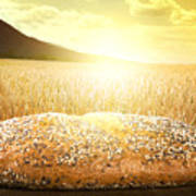 Bread And Wheat Cereal Crops At Sunset Poster