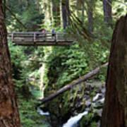 Bridge At Sol Duc Fall #1 Poster