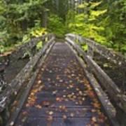 Bridge In A Park Poster