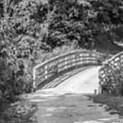 Bridge In The Path I Poster