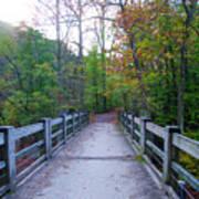 Bridge To Paradise - Wissahickon Valley Poster