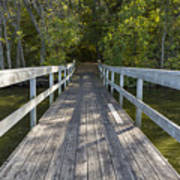 Bridge To Woods 1 Poster