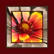 Bright Blanket Flower With Design Poster