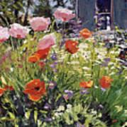 Brilliant Garden Poster