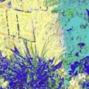 Brimstone Blue Poster