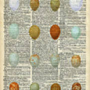 British Birds Eggs Poster