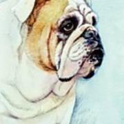British Bulldog Poster