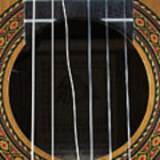 Broken String On A Classical Guitar Poster