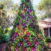 Bromeliad Christmas Tree At Pinewood Estate, Bok Tower Poster