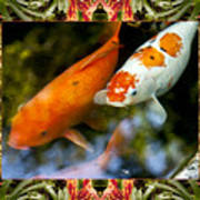 Bromeliad Koi Poster by Bell And Todd